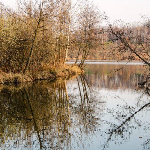 Riserva Naturale del Lago di Sartirana a Merate